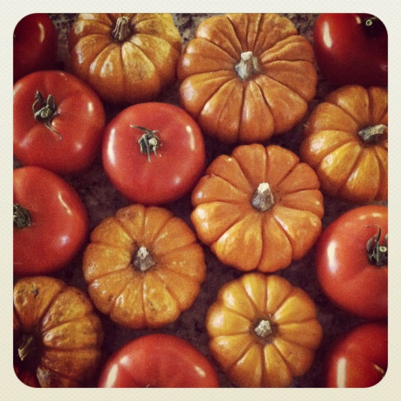 pumpkin tomatoe by Katariina fAgering