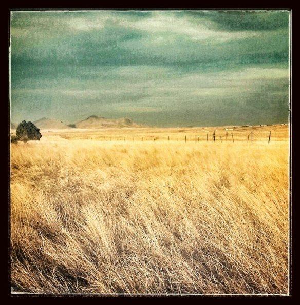 southern arizona prairie by Katariina Fagering