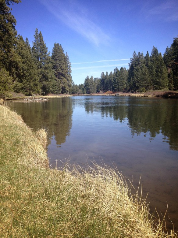 deschutes river bank by Katariina Fagering
